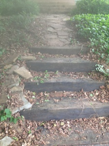 Possibility: Fix up these steps leading to our front walkway.