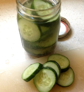 Quick Pickle Yumminess